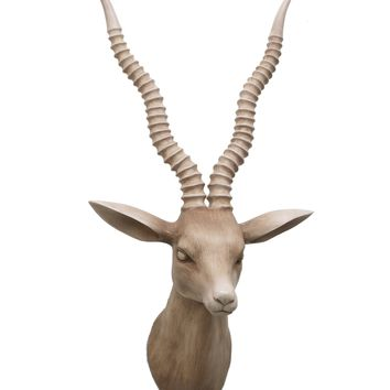 Resin Antelope Head Wall Decor