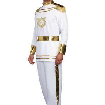 Fairytale Prince Male Costume (X-Large,As Shown)