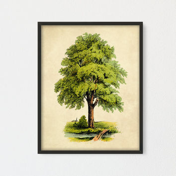 Poem Tree Printable, Tree Art By Joyce kilmer, Farmhouse Wall Art, Cottage Decor, Tree Poster Print, Scenery Poster, Vintage Green Tree Art