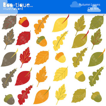 Fall Leaves Digital Clipart. Autumn Clipart. Leaf Clipart. Acorn Clipart. Commercial Use. Autumn Leaves Clip Art. Fall Clip Art.
