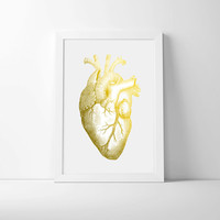 10x15 inch gold foiled anatomical heart, ideal office print, white background, wall art, human heart, quirky poster, gold and black art