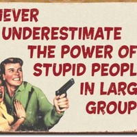 Ephemera - Stupid People Metal Tin Sign , 16x12