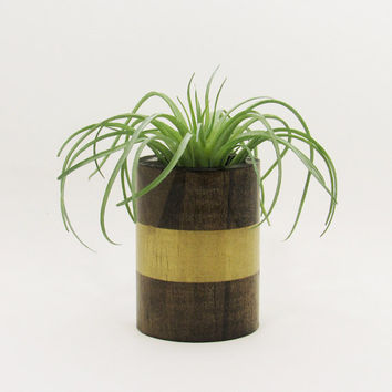 Round Wood Succulent Planter Pot, Modern Plant Holder, Cacti Planter, Indoor Garden Planter, Office Planter, Wooden Planter, Gold Planter