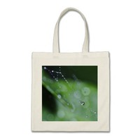 ToteBag: Moment in the Forest Budget Tote Bag
