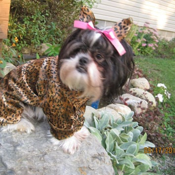 Leopard/Cheetah Cat Dog Halloween Costume size Medium