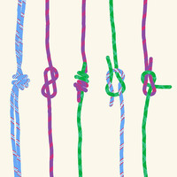 Fine Art Print.  Rock Climbing Ropes.  With Knots.  March 6, 2012.