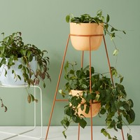 Montgolfier Indoor/Outdoor Plant Stand