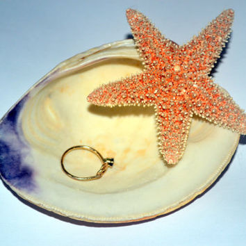 Seashell Ring Dish, Seashell Ring Holder, Seashell Home Decor Starfish