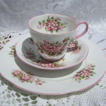 Royal Albert Blossom Time Series Apple Blossom Pink Teacup and Saucer Dessert Plate Shelley Style Trio England