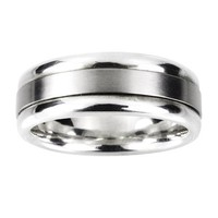 Men's Stainless Steel and Titanium Ring