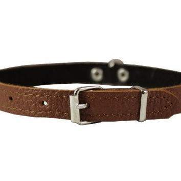 "Brown Genuine Leather Felt Padded Dog Collar 13""x1/2"" Wide Fits 9""-12"" Neck, Chihuahua, Yorkshire Terrier, Puppies"