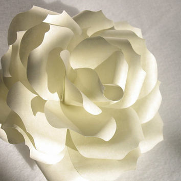 One Dozen 71/2 Inch Ivory Colored Parchment Paper Flowers.