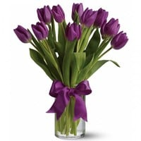 Online flower delivery Order and send Tulip flowers online | Same day delivery