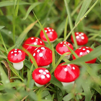 Set of 10 Miniature Mushroom Fairy Garden Ornament Dollhouse Pot Decor DIY Craft