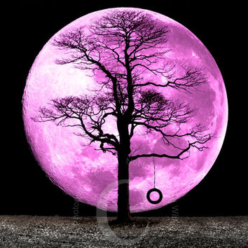 Lone Tree Isolated in a Farm Field with a Full Magenta Moon Landscape Photo Print
