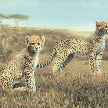 Recess, Cheetahs, Frace, Vintage Art Print, Wildlife, Nature, Animals, Frameable Home Decor
