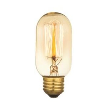 Edison Fliament - Edison Antique Vintage Light Bulb -   - 40 wattage - E26 - 3,000 hrs of life