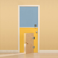 Modern Solids Custom Door