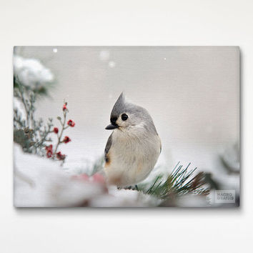 Snowy Bird Print Art, Stretched Canvas, Nature Photography, Bird Art Print