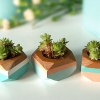 Geometric Mini Planters set of 3, for succulents, Home Decor
