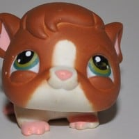 Guinea Pig #4 (Orange Variant) - Littlest Pet Shop (Retired) Collector Toy - LPS Collectible Replacement Figure - Loose (OOP Out of Package & Print)
