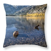 "Preening Ducks At Silver Lake 14"" x 14"" Throw Pillow for Sale by Priya Ghose"