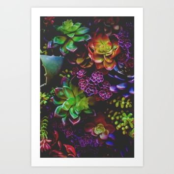 Treasure of Nature VI Art Print by Mixed Imagery