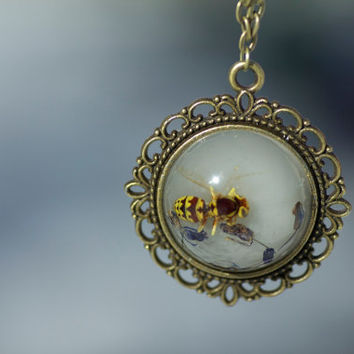 REAL yellow wasp preserved in white resin with dried blue flower petals on bronze pendant with bronze necklace chain