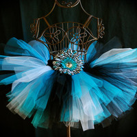 Turquoise Zebra Tutu Skirt by formyprincesstutus on Etsy