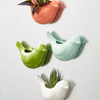Sparrow the Seeds Magnetic Planter Set | Mod Retro Vintage Decor Accessories | ModCloth.com