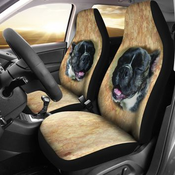 Customer Dog seat covers