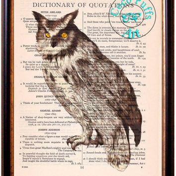 Gray Owl Drawing Beautifully Upcycled Vintage Dictionary Page Book Art Print, Bird Print