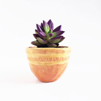 Yellow Ceramic Planter - TerraCotta Planter - Ceramics and Pottery - Pottery Plant Pot