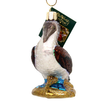Old World Christmas BLUE FOOTED BOOBY Glass Marine Bird 16113