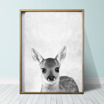 Fawn Print Baby Deer print Nursery decor Posters Wall Art Print Animal Print