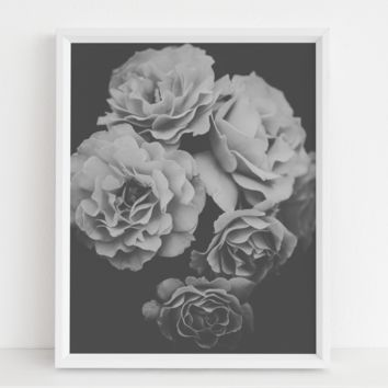 Vintage Close Up Flowers Poster Wall Art 12x16