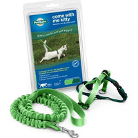 Kitty Harness & Bungee Lead Lime - Small