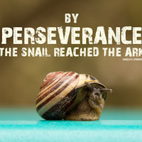 Christian Poster | Charles Spurgeon Quote | By Perseverance the Snail Reached the Ark