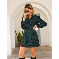 Notch Collar Polka Dot Dress