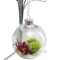 Custom Creature Ornament Terrarium