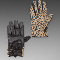 Maison Scotch Gloves in Leopard from REVOLVEclothing.com