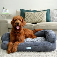 Simmons Beautyrest Colossal Rest Orthopedic Memory Foam Dog Bed | Overstock.com Shopping - The Best Deals on Orthopedic Pet Beds