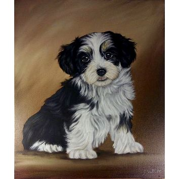 """Large 20"""" Original Hand Painted Oil Havanese Puppy Dog  Artist Signed Painting"""