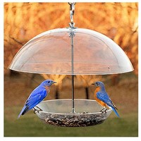 Woodlink NABBFDR Dome Top Seed & Bluebird Feeder, 11-3/4 Inch - Quantity 2