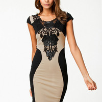 Two Tone Lace Cap-Sleeve Bodycon Dress