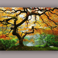 Maple Tree Mind Blowing Canvas Wall Art - Two Gifts, Keyholder Leaf and 5 Stars, Startonight Home and Kitchen Decor