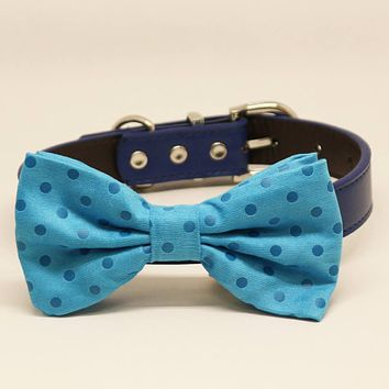 Blue Dog Bow Tie collar, Pet Beach Wedding Accessory, Polka Dots, Birthday, Something Blue