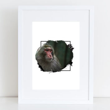 Monkey China  - Photography Printable art , Instant download