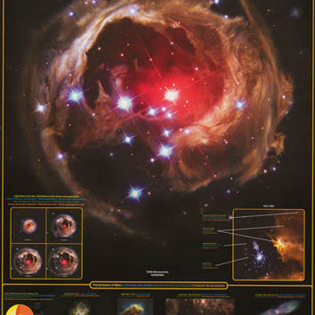 The Stars Constellation Education Poster 24x36