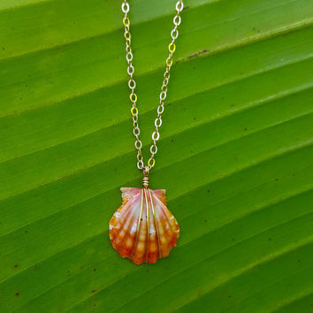 Sunrise Shell Necklace, 14k Gold filled, hawaiian sunrise, Hawaii, yellow sunrise, pink, shells, shell jewelry, mermaid, hawaii shell